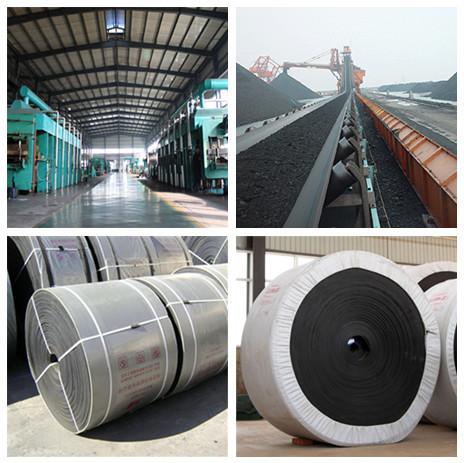 EP-250 Conveyor belt Specification